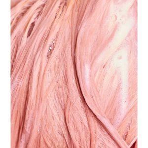 """""""Rose"""" šampūnas rožiniam atspalviui"""